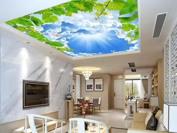 نوسادکور-سقف کشسان لابل